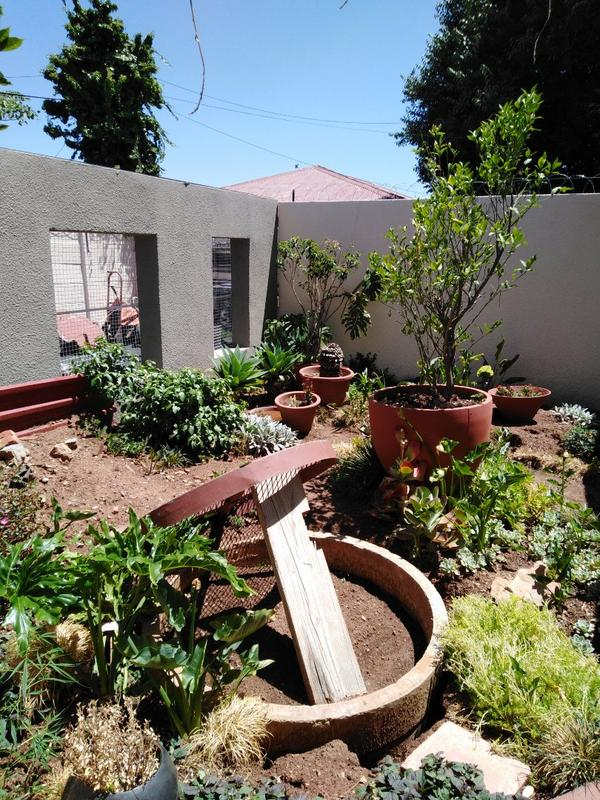 Property For Sale in Sophiatown, Johannesburg 8